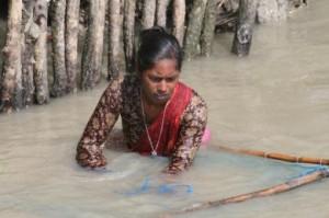 Profughi ambientali. Il caso Bangladesh*